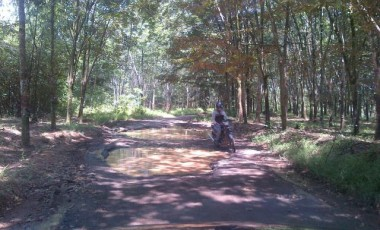 Jalan Desa Muara Emil – Pagar Dewa Rusak Parah