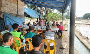 Petani Padi Desa Tanjung Agung Gelar Tanam Padi Perdana