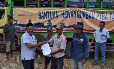 PTBA Serahkan 43 Hewan Kurban di Kabupaten Muara Enim dan Lahat