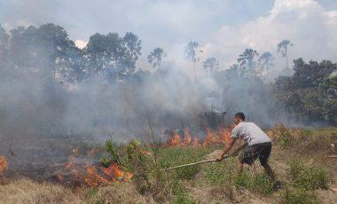 Kebakaran Lahan Nyaris Lalap Pemukiman Warga