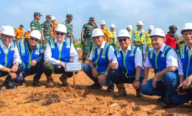Lestarikan Lingkungan, PTBA Tanam 2020 Bibit Pohon Kayu Putih