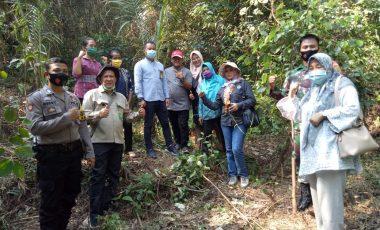 Tim Verifikasi Proklim Kunjungi Desa Binaan Pertamina EP Asset 2 Limau Field