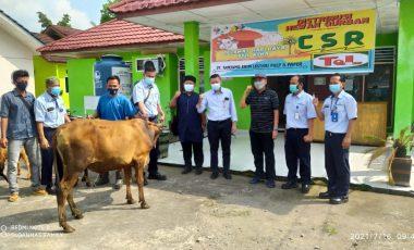 PT TeL PP Distribusikan Hewan Qurban untuk Masyarakat Sekitar
